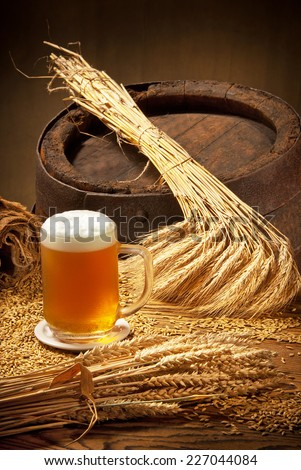 pint of beer and barley - stock photo