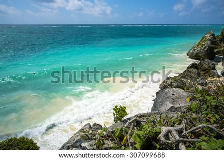 portrait nature. landscape - stock photo