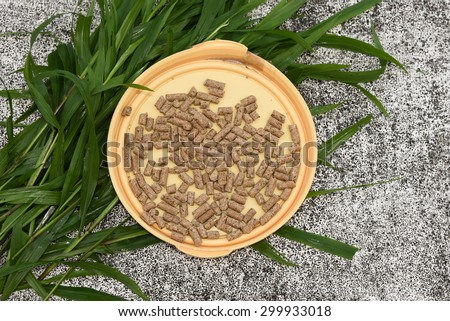 Professional dry pet food spread out in a plate with green grass. Good feed for rabbit, goat, cow animals. - stock photo