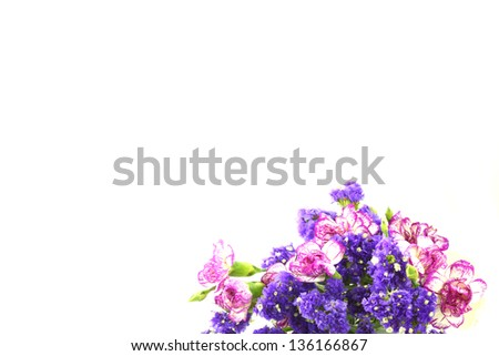 purple flowers, isolated