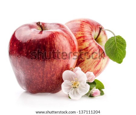Red Apples with flowers isolated on white background - stock photo