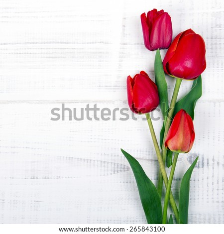 red tulips on white wooden background - stock photo