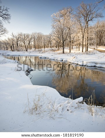 """""""Reflections of Winter""""     Snow-covered trees bathed in the warm light of a setting sun create reflections in the surface of Willoway Brook.  The Morton Arboretum, Lisle, Illinois. - stock photo"""