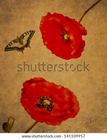 Rep poppies illustration with butterfly on grunge old background