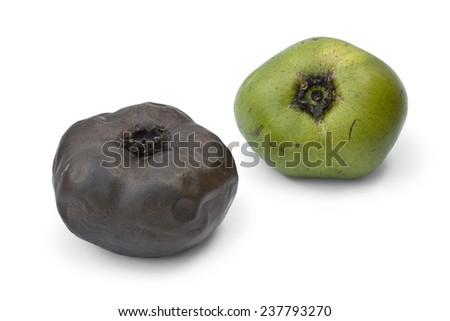 Ripe and unripe black sapote fruit on white background - stock photo