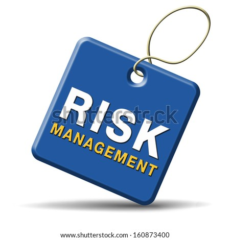Risk Management and Insurance how to write a policy paper