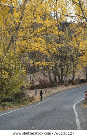 road photos  artvin savsat