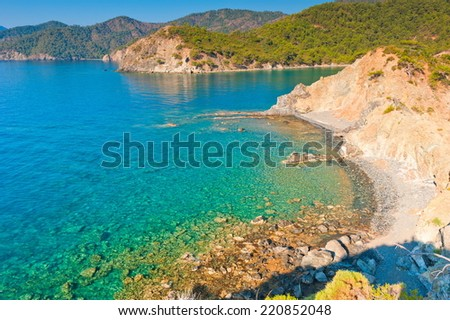 rocky shore by the sea, covered with green trees - stock photo