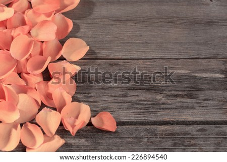roses petals on wooden table - stock photo