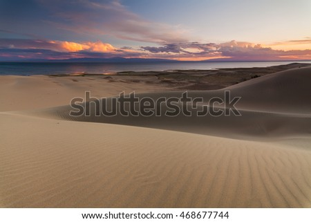 Sand dunes on the background of the desert lake. Gobi Desert