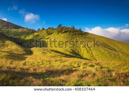 Savanna grassland near Mount Bromo volcanoes in Bromo Tengger Semeru National Park, East Java, Indonesia - stock photo