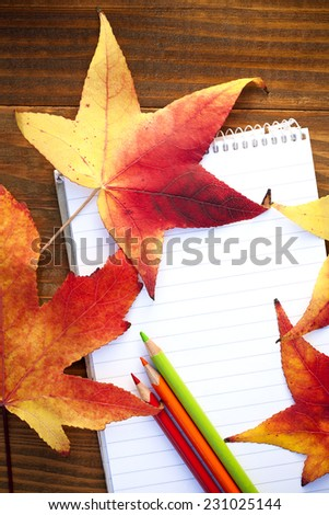 school colored pencils and autumn leaves - stock photo