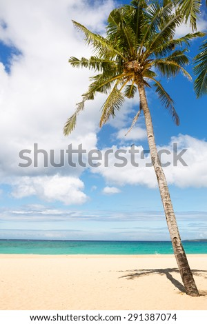 sea and coconut palm, idyllic vacation
