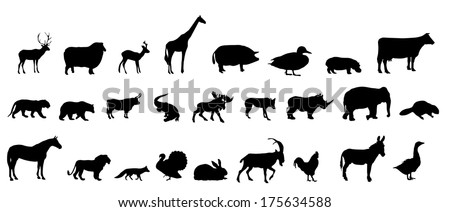 set of animals silhouette - stock photo