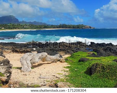 shipwreck beach  in poipu, kauai, hawaii, with makawehi point in the background      - stock photo