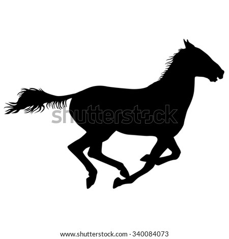 silhouette of black mustang horse illustration