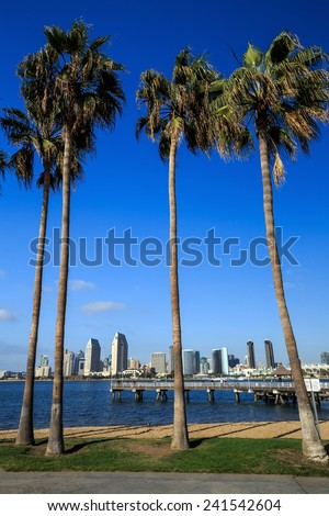 Skyline of San Diego and Palm Trees, California USA - stock photo