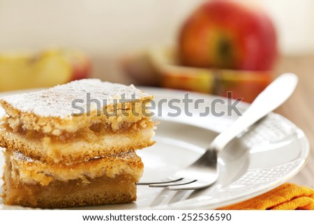 Slice of homemade apple pie - stock photo