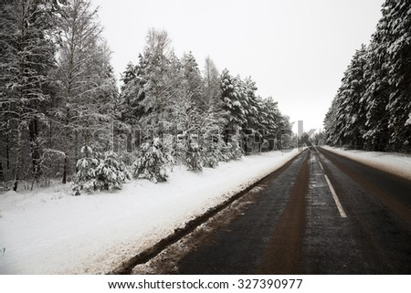 small country road in winter season