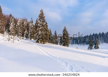 Snow-covered winter mountain landscape with pine-forest