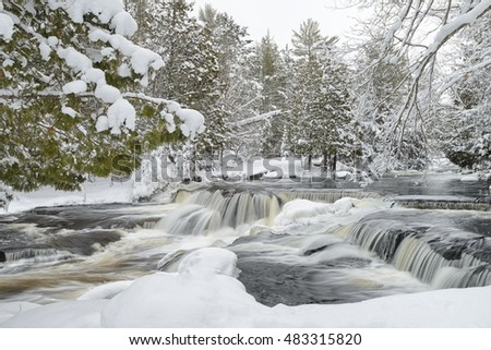 Snowy evergreens overhanging the icy river at Upper Bond Falls. Freshly fallen snow on a peaceful winter morning