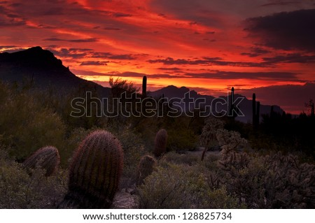 """""""Sonoran Sunrise""""  Deep oranges and reds seep into the sky as dawn breaks over the sonoran desert in Usery Mountain Regional Park, Mesa, Arizona. - stock photo"""