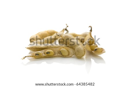 soybeans isolated on white background - stock photo