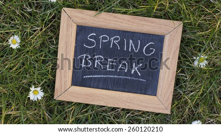 Spring break written on a chalkboard in a park between grass and flowers - stock photo