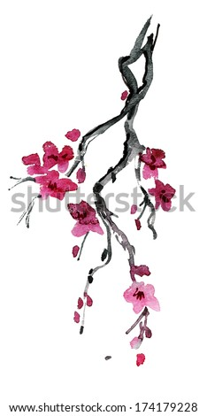 spring cherry blossom. watercolor painting. - stock photo
