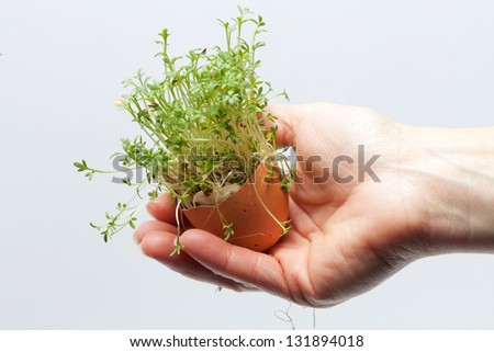 Spring Easter Egg in the Hand - stock photo