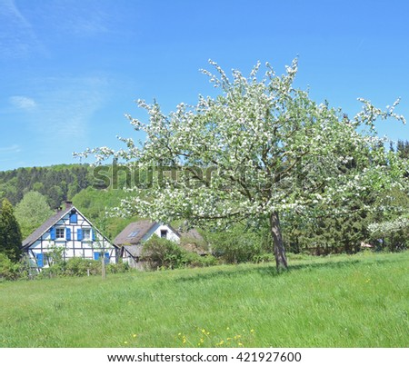 Springtime in Bergisches Land near Solingen,North Rhine Westphalia,Germany - stock photo