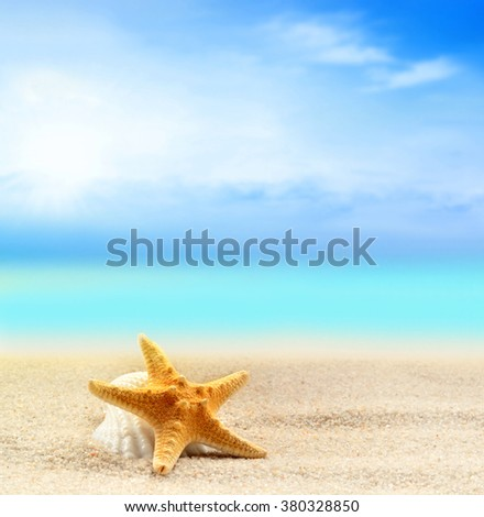 starfish and starfish on the sandy beach and palm at ocean background - stock photo