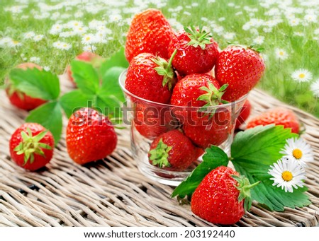 Strawberry on a willow tray in front of a daisy flower background - stock photo