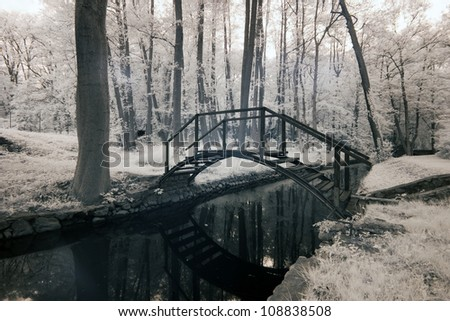 stream in park in Poland. The infrared image - stock photo