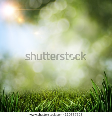 summer backgrounds with green grass and sun beam - stock photo