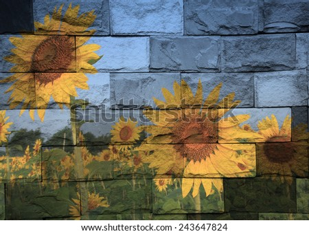 """sunflower field in Thailand"" The stone painting concept - stock photo"