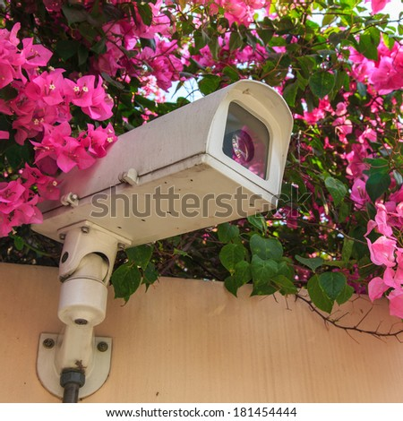 surveillance camera or cctv against nature  - stock photo