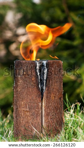 """Swedish torch"" or simply burning stub on a glade for rest or to cook food - stock photo"