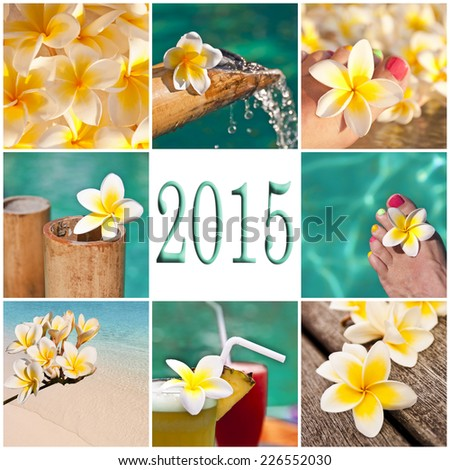 2015, swimming pool and plumeria collage