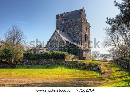 16th Century Craggaunowen castle in Co. Clare - Ireland - stock photo