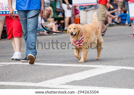 4 Th July 2015, Barnstable county, Massachusetts, USA Dog walking on parade