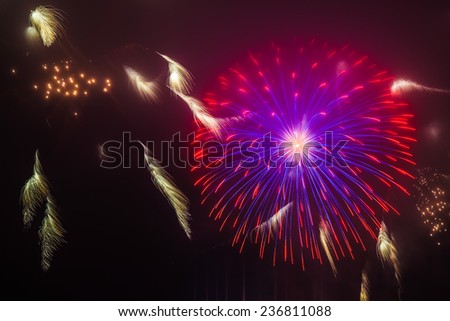 4th of July fireworks in San Francisco - stock photo