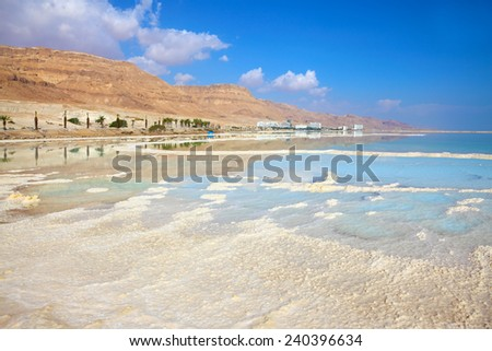 The coast of the Dead Sea in Israel. Along the shore with palm trees, which are reflected in the water. Path from the evaporated salt - stock photo