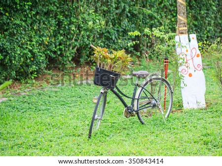 The old model bicycle decorated in the garden - stock photo