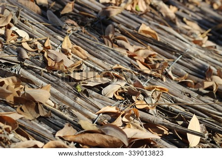 The roof of reeds close to with autumn leaves