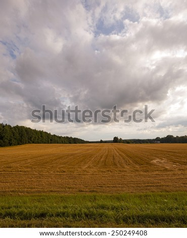 the storm sky of dark color over an agricultural field - stock photo