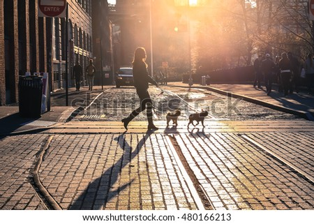 The woman take a walk with dog at sunset on Brooklyn street, New York City, USA