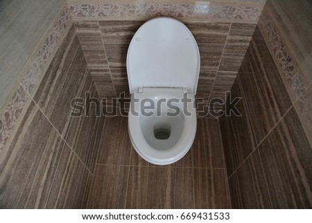 Toilet bowl in the toilet.  Toilet in the toilet, view from the top