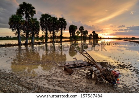 tractors for cultivated soil for rice plantation at Thailand in sunset time - stock photo