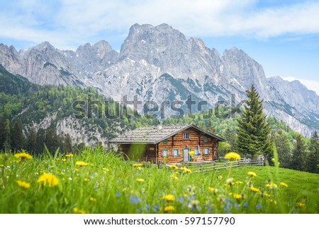 Mountain cabin stock images royalty free images vectors for White rock mountain cabins